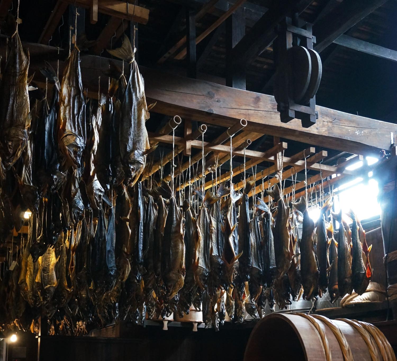 【写真】村上の千年鮭のイメージ01